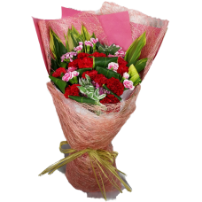 Carnation for You